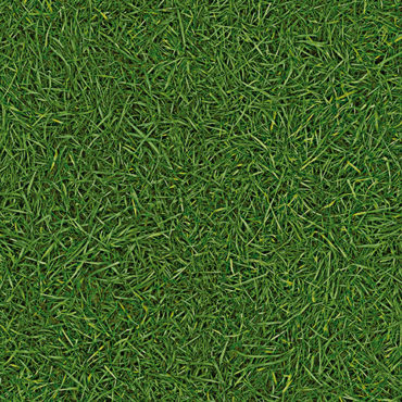 Surfaces Gras