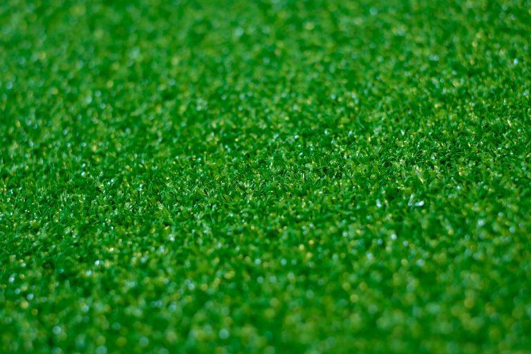 Dundee Green Rasen Teppich